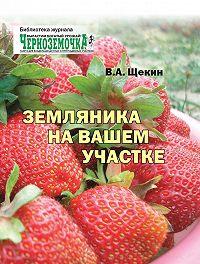 Владимир Щекин -Земляника на вашем участке