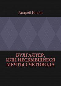 Андрей Ильин - Бухгалтер, или Несбывшиеся мечты счетовода
