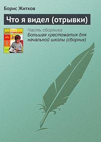 Борис Житков -Что я видел (отрывки)