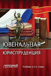 Коллектив авторов -Ювенальная юриспруденция. Том 2