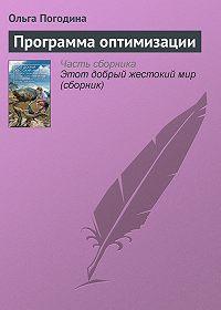 Ольга Погодина - Программа оптимизации
