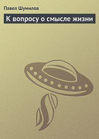 Павел Шумилов -К вопросу о смысле жизни