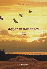 Владимир Киреев - Журавли над полем (сборник)