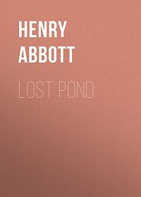 Henry Abbott -Lost Pond