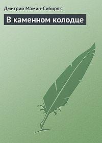 Дмитрий Мамин-Сибиряк -В каменном колодце