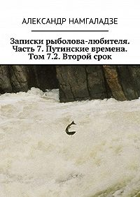 Александр Намгаладзе -Записки рыболова-любителя. Часть 7. Путинские времена. Том 7.2. Второй срок