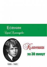 Илья Мельников -Есенин за 30 минут