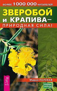 Мария Полевая -Зверобой и крапива – природная сила!