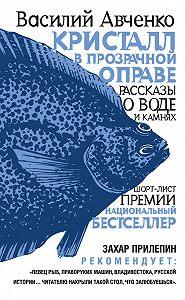 Василий Авченко - Кристалл в прозрачной оправе. Рассказы о воде и камнях