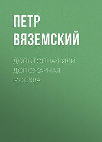 Петр Андреевич Вяземский -Допотопная или допожарная Москва