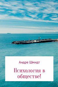 Андре Шмидт -Психология в обществе