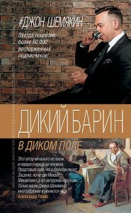 Джон Шемякин -Дикий барин в диком поле (сборник)