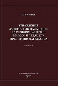 Е. Чеканов - Управление занятостью населения в условиях развития малого и среднего предпринимательства