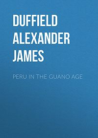 Alexander Duffield -Peru in the Guano Age