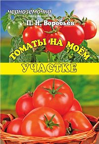 Петр Воробьев -Томаты на моем участке