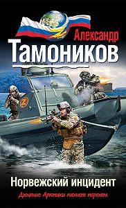Александр Тамоников -Норвежский инцидент