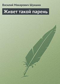 Василий Шукшин -Живет такой парень