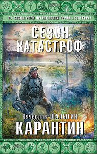 Вячеслав Шалыгин - Карантин