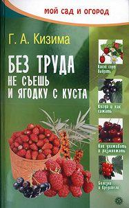 Галина Кизима -Без труда не съешь и ягодку с куста