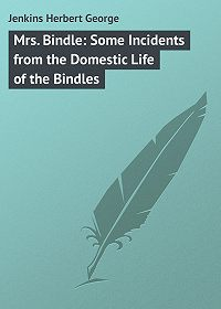 Herbert Jenkins -Mrs. Bindle: Some Incidents from the Domestic Life of the Bindles