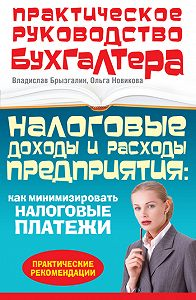 Ольга Александровна Новикова -Налоговые доходы и расходы предприятия: как минимизировать налоговые платежи