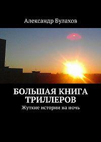 Александр Булахов -Большая книга триллеров. Жуткие истории наночь