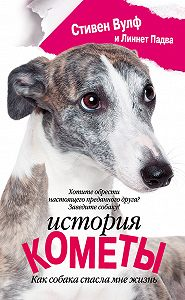 Стивен Вулф -История Кометы. Как собака спасла мне жизнь