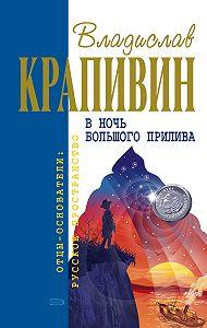 Владислав Крапивин -Застава на Якорном Поле