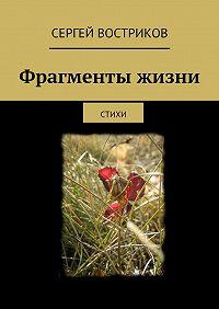 Сергей Востриков - Фрагменты жизни. стихи