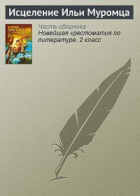 Паблик на ЛитРесе - Исцеление Ильи Муромца