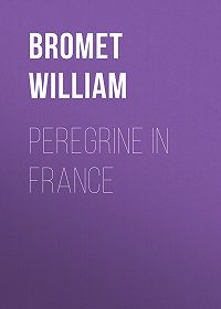 William Bromet -Peregrine in France