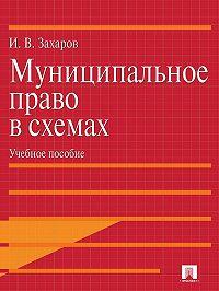 Илья Захаров - Муниципальное право в схемах