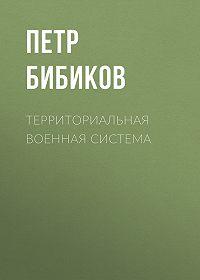 Петр Бибиков -Территориальная военная система