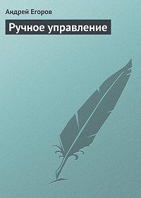 Андрей Егоров -Ручное управление