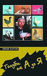 Юрий Харчук -Голуби от А до Я