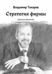 Владимир Токарев - Стратегия фирмы. Практикум: Выпуск№1