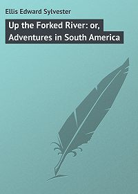 Edward Ellis -Up the Forked River: or, Adventures in South America