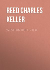 Charles Reed -Western Bird Guide