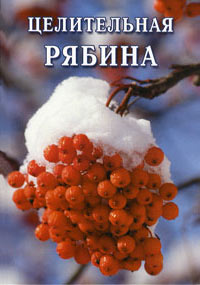 Иван Дубровин - Целительная рябина