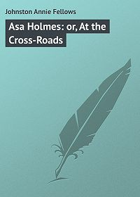 Annie Johnston -Asa Holmes: or, At the Cross-Roads