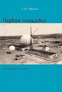 Евгений Васильевич Гаврилин -Первая площадка (полигонные зарисовки)