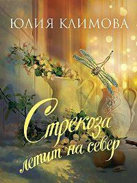 Юлия Владимировна Климова -Стрекоза летит на север