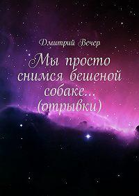 Дмитрий Вечер -Мы просто снимся бешеной собаке… (отрывки)