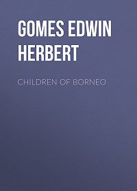 Edwin Gomes -Children of Borneo