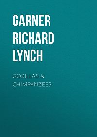 Richard Garner -Gorillas & Chimpanzees