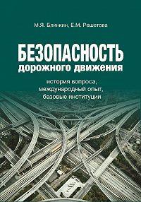 Михаил Блинкин -Безопасность дорожного движения. История вопроса, международный опыт, базовые институции