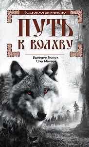 Олег Мамаев -Путь к волхву