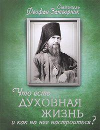 Святитель Феофан Затворник -Что есть духовная жизнь и как на нее настроиться? Письма