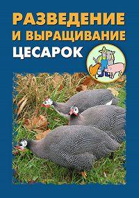 Илья Мельников -Разведение и выращивание цесарок