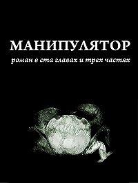 Дима Сандманн -Манипулятор. Глава 003